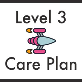 wordpress care plan level 3